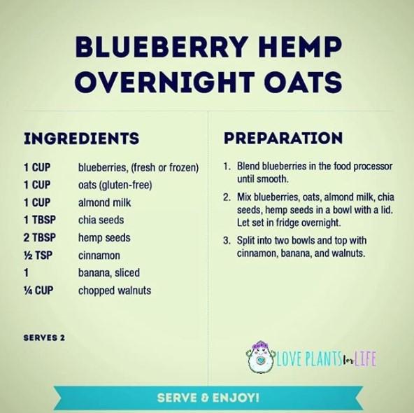 blueberry oats